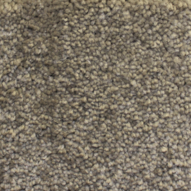 Looptex Mills Rush Landing Beige Cut Pile Indoor Carpet
