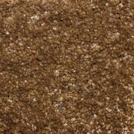 Looptex Mills Rush Landing Brown Cut Pile Indoor Carpet