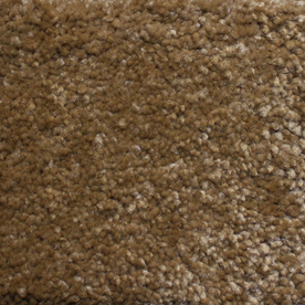Looptex Mills Barely Rustic Beige Cut Pile Indoor Carpet
