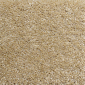 Looptex Mills Barely Rustic Cream Cut Pile Indoor Carpet