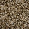 STAINMASTER Essentials Palmer Lifestyle Textured Indoor Carpet