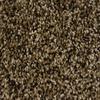STAINMASTER Essentials Palmer Pioneer Textured Indoor Carpet