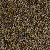 Looptex Mills Palmer Multicolor Textured Carpet