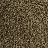 Looptex Mills Nitro Multicolor Textured Indoor Carpet