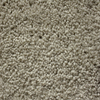 Looptex Mills Nitro Lightning Rod Textured Carpet