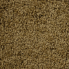 Looptex Mills Essentials Nitro Brown Textured Indoor Carpet