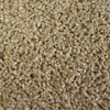Looptex Mills Notorious Solid Textured Carpet