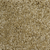 STAINMASTER Essentials Notorious Eldorado Textured Indoor Carpet