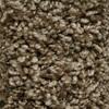 STAINMASTER Essentials Kenley Tonbridge Textured Indoor Carpet