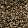 Looptex Mills Kenley Brown Textured Carpet