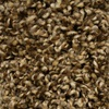 Looptex Mills Briley Brown Textured Carpet