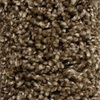 Looptex Mills Joelton Brown Textured Carpet