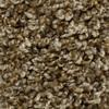 STAINMASTER Essentials Joelton Modern Way Textured Indoor Carpet