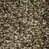 STAINMASTER Essentials Cadiz Platform Textured Indoor Carpet