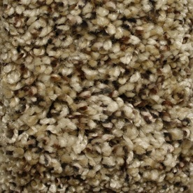 STAINMASTER Essentials Cadiz Hillside Textured Indoor Carpet
