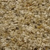 Looptex Mills Cadiz Brown Textured Carpet