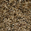 STAINMASTER Essentials Cadiz Chipstead Textured Indoor Carpet