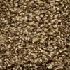 STAINMASTER Essentials Cadiz Full Range Textured Indoor Carpet