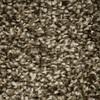 STAINMASTER Essentials Valmeyer Platform Textured Indoor Carpet