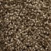 STAINMASTER Essentials Valmeyer Peak Time Textured Indoor Carpet