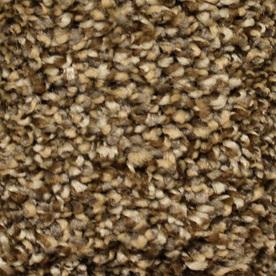 STAINMASTER Essentials Valmeyer Full Range Textured Indoor Carpet
