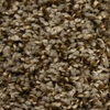 Looptex Mills Summer Brown Textured Carpet
