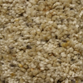 STAINMASTER Essentials Summer Key Role Textured Indoor Carpet