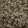 STAINMASTER Essentials Summer Stoats Nest Textured Indoor Carpet