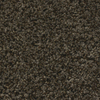 STAINMASTER Essentials Nolin Twilight Textured Indoor Carpet