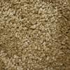 Phenix Cornerstone Canyon Tan Textured Indoor Carpet