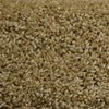 STAINMASTER PetProtect Lexington Reflection Textured Indoor Carpet