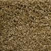 STAINMASTER PetProtect Lexington World class Textured Indoor Carpet