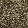 STAINMASTER PetProtect Lexington North ridgeline Textured Indoor Carpet