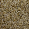 STAINMASTER PetProtect Soul Mate Loyalty Textured Indoor Carpet