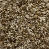 STAINMASTER Essentials Valmeyer Express Modern way Textured Indoor Carpet
