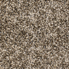 STAINMASTER Essentials Durand Playtime Textured Indoor Carpet