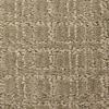 Phenix Nylon Cut and Loop Carpet Sample