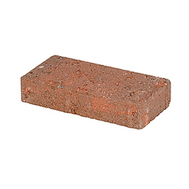 Terra Cotta Blend/Smooth Texture Holland Patio Stone (Common: 4-in x 8-in; Actual: 3.8-in x 7.7-in)
