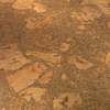 Natural Floors by USFloors 11-5/8 W x 35-5/8 L Cork Locking Hardwood Flooring