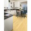 Natural Floors by USFloors Exotic Natural Bamboo Hardwood Flooring (16.9-sq ft)