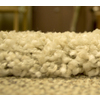 Balta Luxury Shag-Opening Night Rectangular Indoor Woven Area Rug (Common: 5 x 7; Actual: 63-in W x 87-in L)