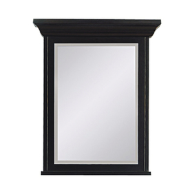 DECOLAV 28-1/4-in H x 20-in W Bathroom Mirror