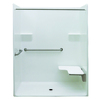 Laurel Mountain Whitwell Low Zero Threshold Barrier Free White Gelcoat and Fiberglass One-Piece Shower (Common: 32-in x 60-in; Actual: 78.75-in x 33-in x 62-in)