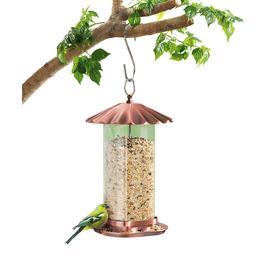 Garden Treasures Glass Hopper Bird Feeder