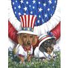 Precious Pet Paintings Dachshund 4Th Of July Flag