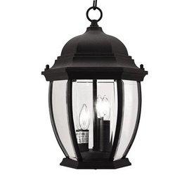 Livex Lighting Kingston 14-in Black Outdoor Pendant Light