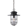 Westmore Lighting 16-in Matte Black Outdoor Pendant Light