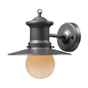 Westmore Lighting 10-in Graphite Outdoor Wall Light