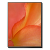 art.com 30.75-in W x 40.75-in H Floral and Botanical Canvas