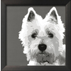 art.com 13-in W x 13-in H Animals Framed Wall Art